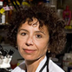Rodica Pop-Busui, M.D., Ph.D. lead author of the Diabetic Neuropathy statement