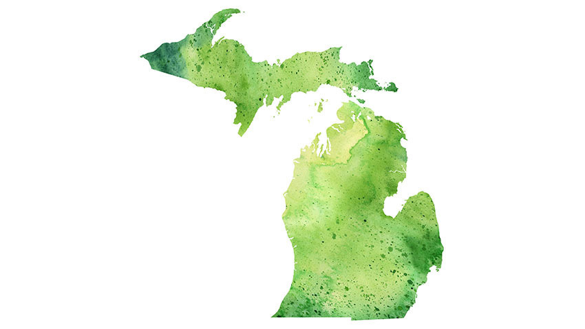 Cannabis in Michigan: New Report Documents Trends Before Recreational Legalization