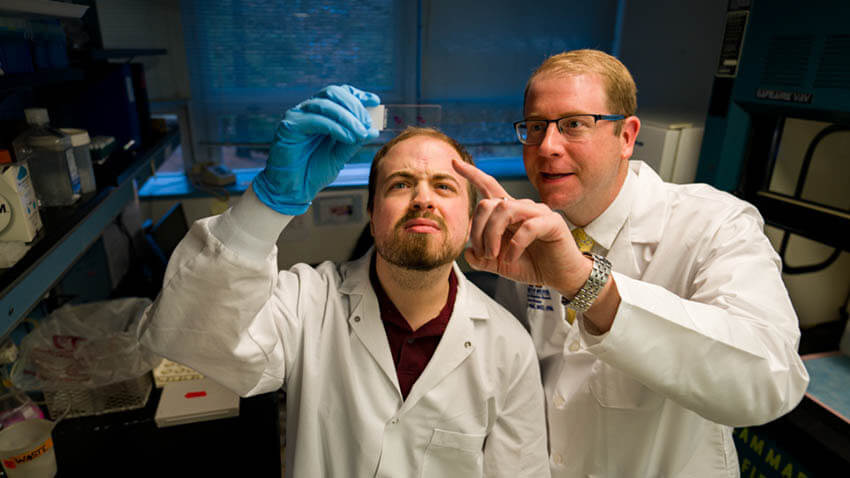 2 doctors looking at slide in lab