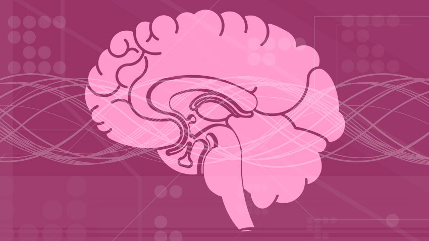drawing of a pink brain on a dark pink background