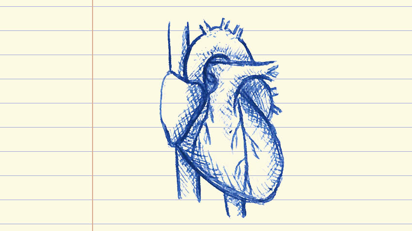 drawing on lined paper of heart in blue ink