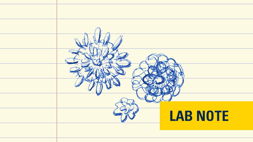 "bacteria viruses drawn in blue ink on lined paper with yellow badge with words ""lab note"" in blue"
