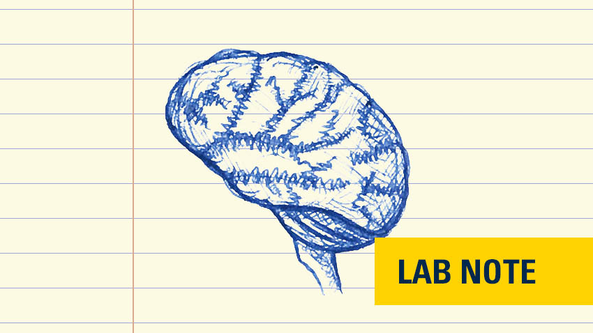 "blue ink drawing on lined paper of brain with yellow badge on bottom right with blue writing that says ""lab note"""