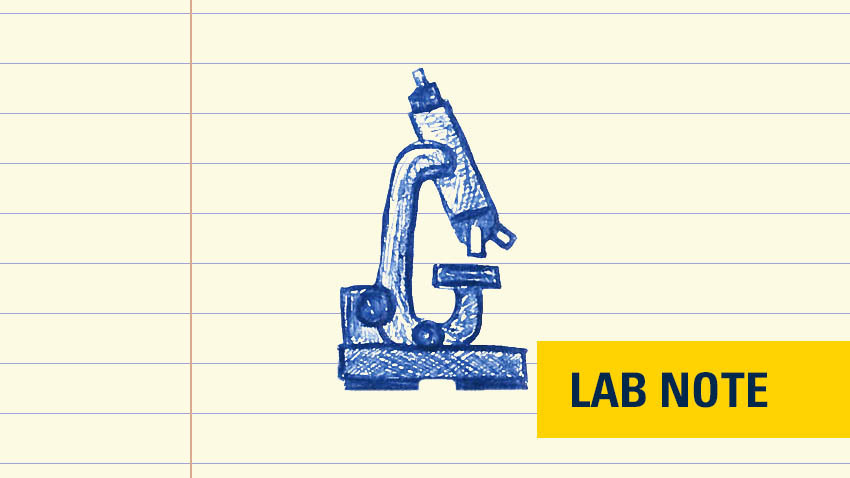 "microscope drawing in blue ink on lined paper with words ""lab note"" in yellow and navy on bottom"