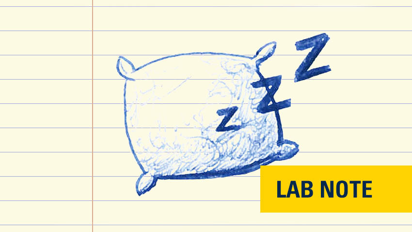 "pillow drawn in blue ink on lined paper with yellow and navy font badge saying ""lab note"" on bottom right"