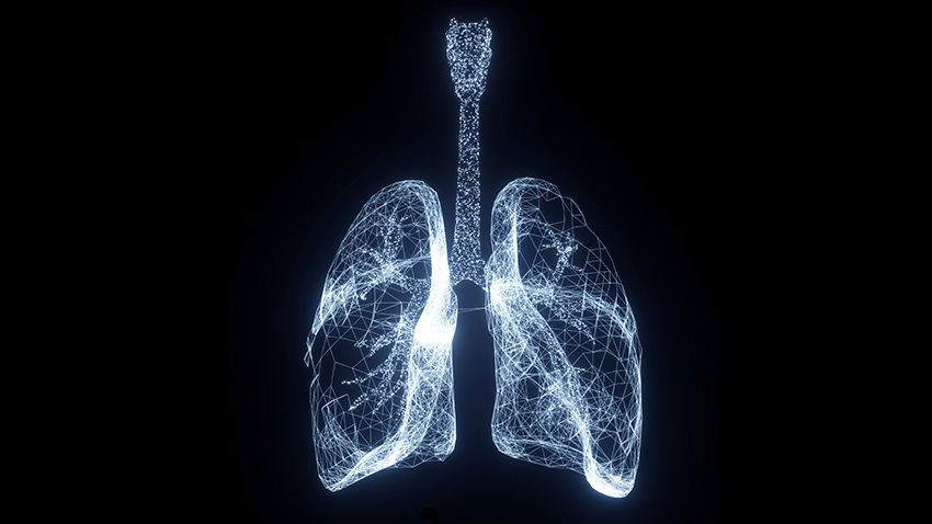 Lungs Glowing White Wire Black.