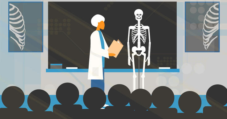 Teacher with white hair in classroom teaching students with skeleton in front of blackboard