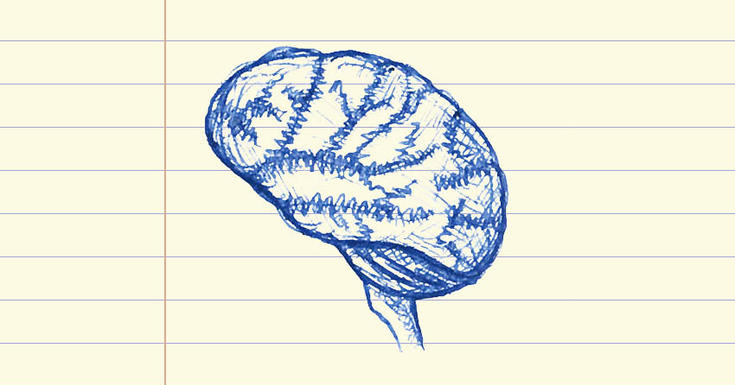 Drawing of brain on note paper in blue ink