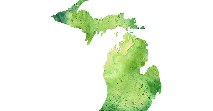 drawing of grass green state of michigan