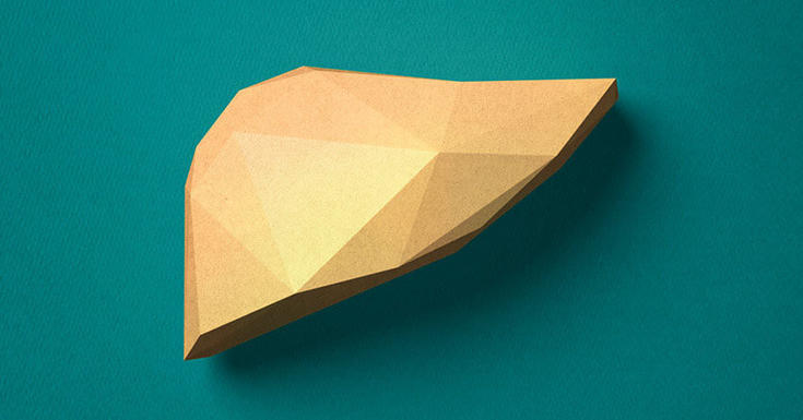 Brown Geometric paper liver on teal background