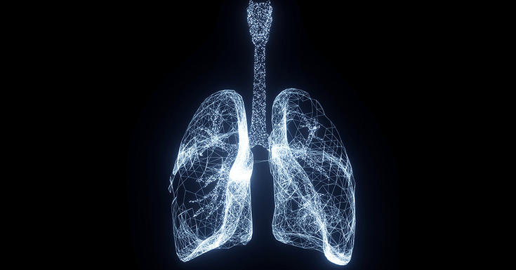 lungs glowing white wire black background