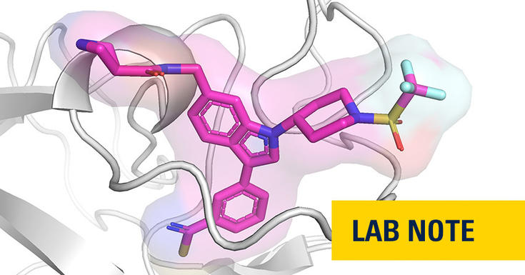 protein in pink and blue an light grey with lab note badge spelled out on bottom right in yellow background and navy font