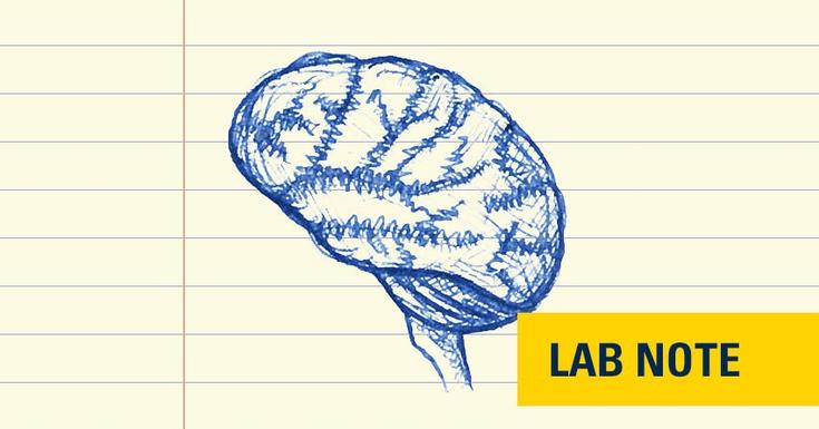 drawing of brain in blue ink with lab note badge in yellow bottom right